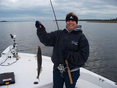 Seahawk inshore fishing report 12 18 08 carolina beach for Carolina beach fishing charters