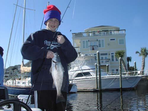 Seahawk inshore fishing report 3 6 08 carolina beach for Carolina beach fishing charters