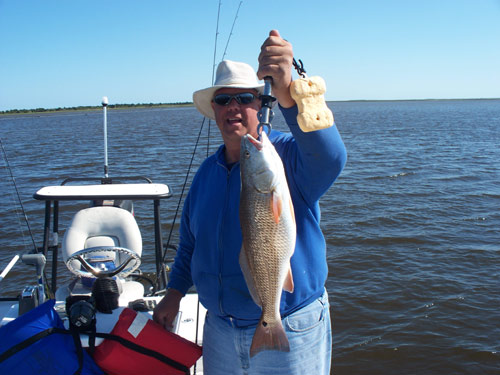 Seahawk inshore fishing report 5 3 10 lots of different for Carolina beach fishing charters